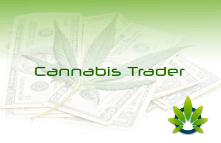 Cannabis Trader Is it scam?